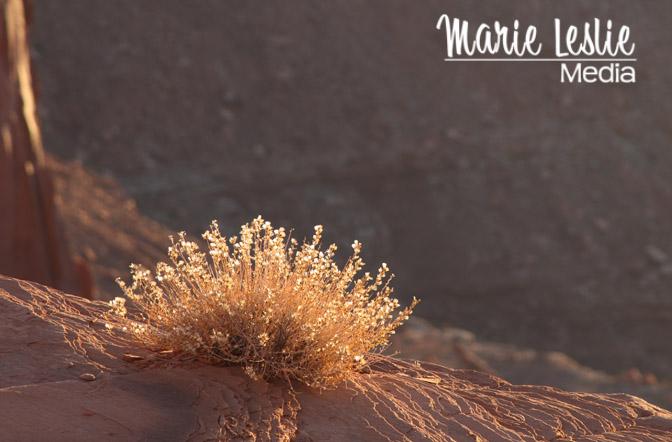 mesa arch, moab, canyonlands national park, utah