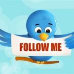 twtter bird follow me
