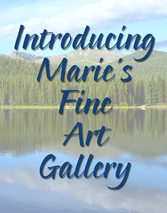 Introducing Our New Fine Art Gallery