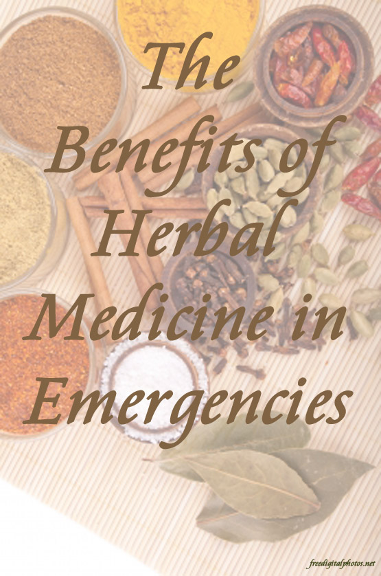 The Benefits of Herbal Medicine in Emergencies