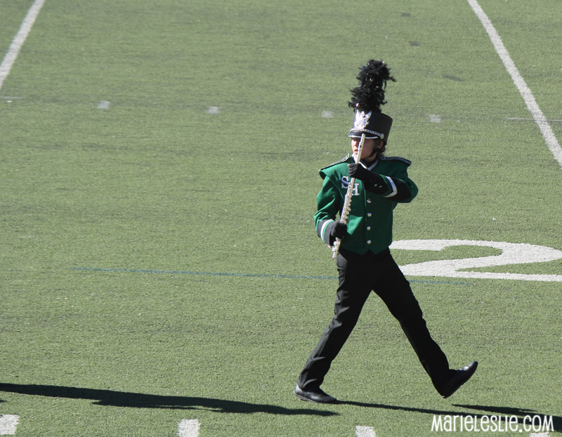 Marching Band Flute Marching Band Flute Player