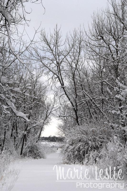 Cherry Creek Hiking Trail