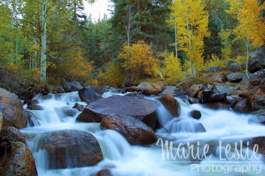 Scott Gomer Creek at Guanella Pass